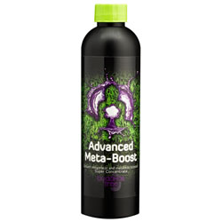 Advanced Meta Boost 250 ML